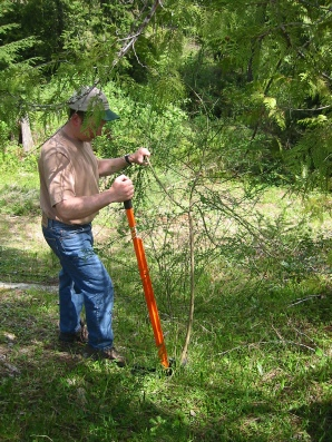 The Extractigator is a mechanical tree removal tool